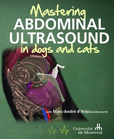 Mastering Abdominal Ultrasound in dogs and cats (english