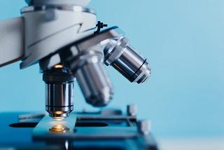 Laboratoire en hématologie - pour DMV et TSA