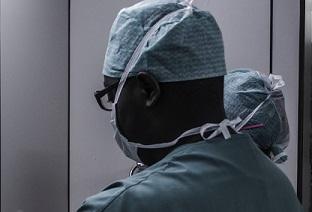 Atelier de chirurgie chez le chien : Amputation, approche paramédiane de l'abdomen et chirurgies urétrales