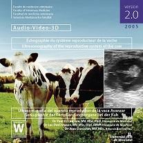 Échographie du système reproducteur de la vache
